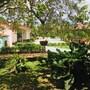 O Jungle Spa e Hotel photo 20/41