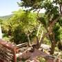 Coconut Tree Villa photo 5/21
