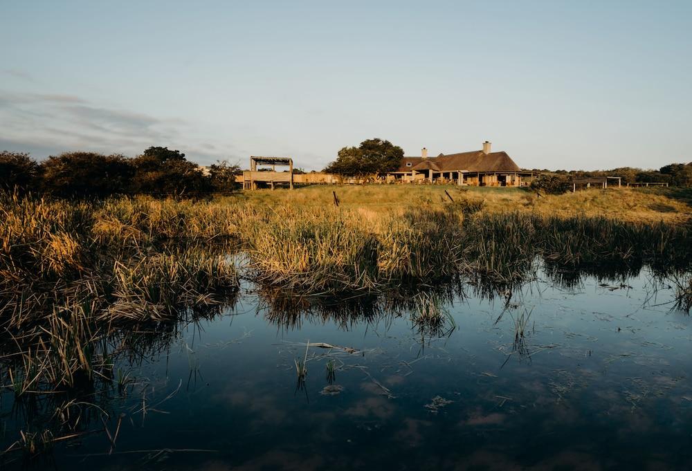 Hlosi Game Lodge-Amakhala Game Reserve