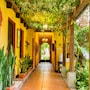 Hotel Casa Antigua photo 25/41