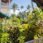 Hotel Residence Playa Colibri photo 3/41