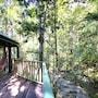 Narrows Escape Rainforest Retreat photo 7/41