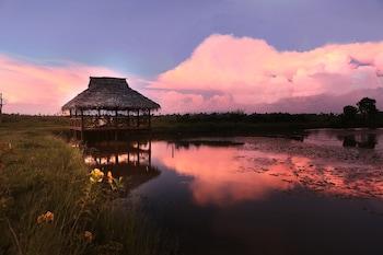 椰子潟湖席格地球飯店