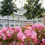 Best Western Plus Amedia Art Salzburg photo 17/35
