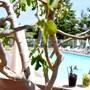 The Originals City, Le Mas de Grille, Montpellier Sud (Qualys-Hotel) photo 20/37