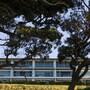 Doubtless Bay Villas photo 14/32