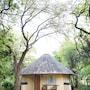 Sefapane Lodges and Safaris photo 36/41