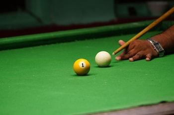 Dudhsagar Spa Resort - Billiards  - #0