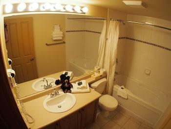 Fireside Lodge by Bear Country - Bathroom  - #0