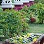 Thazin Garden Hotel photo 8/29