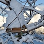 Telemark Guesthouse photo 4/13