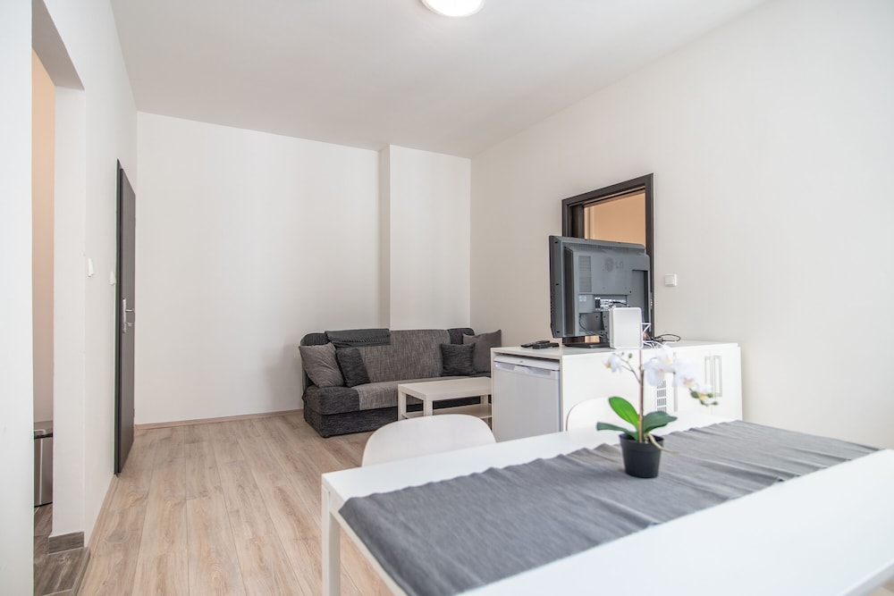 Apartment with one bedroom near metro and Zizkov TV Tower