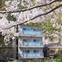 Alphabed Hirosima Peace Road photo 5/41