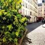 Paris - Boulnois photo 3/18