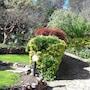 Villa Naranja photo 29/41