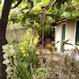 House With 2 Bedrooms in Gaula, With Wonderful sea View and Enclosed G photo 22/25