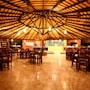 Amazon Ecopark Jungle Lodge photo 7/41
