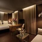Brown TLV Urban Hotel