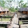 Loboc River Resort photo 32/41