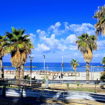 Beachfront Hostel (Israel 415009 undefined) photo