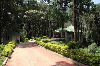 大森林渡假村