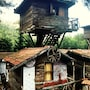 Kadir's Tree Houses photo 29/41