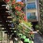 Marin-A Hotel photo 30/41