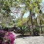 Flamingo Villas Resort photo 7/41