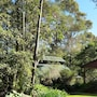 Bellbird Cottage B&B photo 30/37