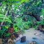 Taman Spa Resort photo 10/41