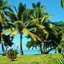 Mai Dive Astrolabe Reef Resort photo 27/35