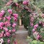 Pestana Quinta do Arco Nature & Rose Garden Hotel photo 22/41