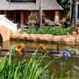 Flamingo's Nest Guest House & Conference Centre photo 33/41