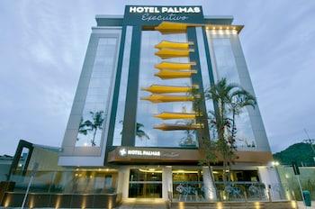 Hotel Palmas Executivo