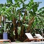 Naturist Angel Nudist Hotel - Couples Only photo 10/41