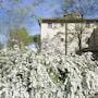 Borgo San Benedetto photo 11/41