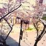 Hotel 1-2-3 Nagoya Marunouchi photo 8/36