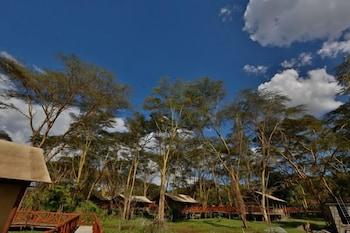 キボコ ラグジュアリー キャンプ