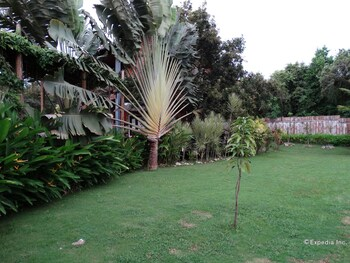 Chill-out Guesthouse - Garden  - #0