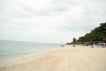 Marina Beach Resort - Beach/Ocean View  - #0