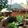 Phi Phi Jungle Hill Bungalow photo 23/41