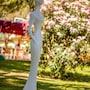 Park Hotel Marinetta photo 21/41