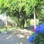 Villa Rosmary photo 15/41