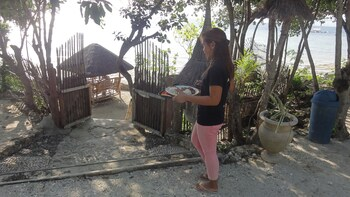 Sea Turtle House Moalboal Cebu Property Grounds
