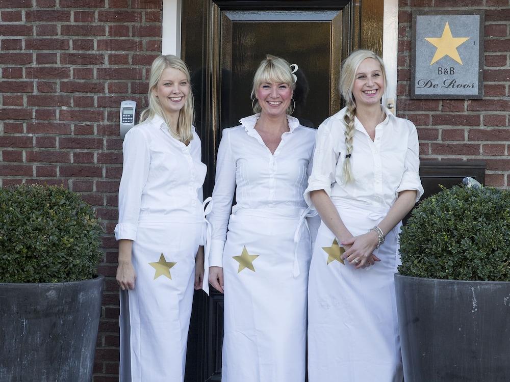 Ster Logies Leeuwarden B&B De Roos