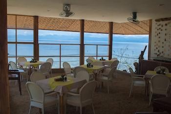 Quo Vadis Dive Resort Moalboal Hotel Lounge