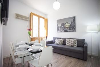 Apartamentos Fuencarral 50