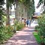 Bitez Garden Life Hotel - All Inclusive photo 25/41