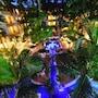 Palm Garden Hotel photo 30/41