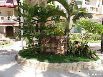 Willy's Beach Hotel Boracay Garden
